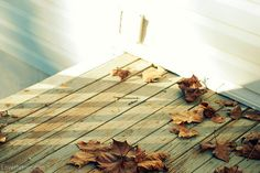 Porch leaves home autumn leaves porch