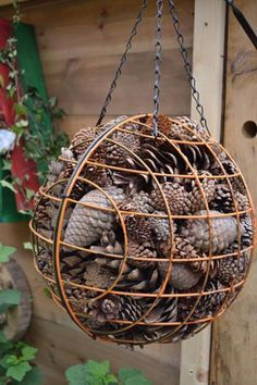 all sizes of pine cones! - all sizes of pine cones! …, # large # pine cones # retreat in the garden, retreat in the garden, Garden Bugs, Garden Insects, Diy Garden, Garden Crafts, Garden Projects, Garden Art, Garden Design, Garden Drawing, Fence Design