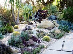 Very pretty outdoor succulent garden
