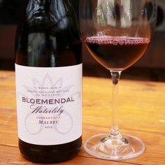 In Search of South African Malbec Wines: Bloemendal Waterlily Malbec Tourism In South Africa, Malbec Wine, South African Wine, Wine Tourism, Water Lilies, Wines, Red Wine, Alcoholic Drinks, Bottle