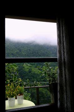 Pencere...Fotoğraf Z. Temur ...