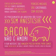 #govegan #vegan #vegano #veganismo #bacon #porcos