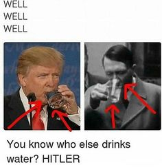 Me when people compare trump to hitler 😒😒😂 Stupid Funny Memes, The Funny, Hilarious, Funny Stuff, Gumball, Pc Meme, Funny Pictures With Words, Liberal Memes, History Memes