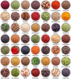 large collection of different spices and herbs isolated on white background Learn English Grammar, Learn English Words, English Language Learning, English Writing, English Study, Teaching English, Food Vocabulary, Grammar And Vocabulary, English Vocabulary Words