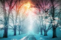 Amazing Royalty-Free Pictures at Great Prices. We hope you'll enjoy them as much as we do. Come and see them today. Royalty Free Pictures, Royalty Free Stock Photos, Property Rights, Street Image, Winter Images, Image Categories, Best Stocks, Montages, Come And See