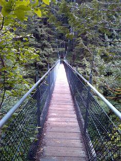 Drift Creek Falls  Suspension Bridge