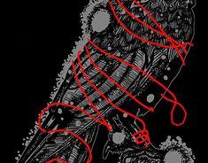 Wacom Intuos, Graphic Design Illustration, Crow, New Work, Behance, Profile, Gallery, Check, User Profile