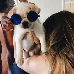 Pinterest and instagram @tatumdiehl Cuddle Buddy, Baby Animals, Cute Animals, Fur Babies, Sunglasses 2016, Cheap Ray Ban Sunglasses, Landscape Illustration, Illustration Art, Women's Fashion