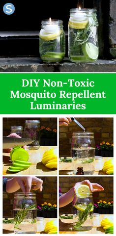 Repel mosquitos and bugs with these easy DIY mosquito repellent luminaries…