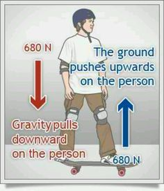 """Force of gravity acting upon the skater is the same as the force acting back, the natural force of the ground. Forces come in """"pears""""! :)"""