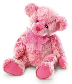 Pink Teddy Bear..