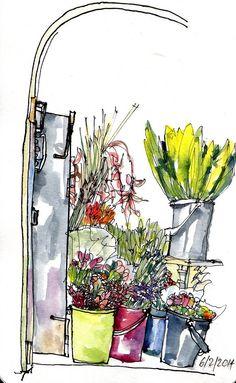 Arte Flor flower shop, Costa Rica | 출처: crclapiz