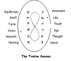 The twelve senses and zodiac Anthroposophy