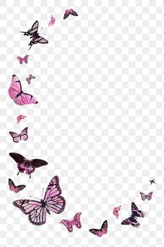 Pink butterfly border design element | premium image by rawpixel.com / Techi Butterfly Background, Butterfly Frame, Butterfly Wallpaper, Pink Butterfly, Paper Background, Textured Background, Instagram Background, Matching Wallpaper, Pink Animals
