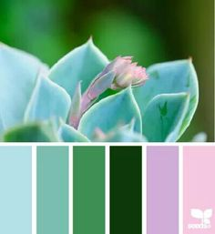 Spring color palette To help you get started, we've selected ten gorgeous color schemes from the amazing Design Seeds website. These might be just what you need for your spring designs! Spring Color Palette, Colour Pallette, Color Palate, Spring Colors, Colour Schemes, Color Combos, Color Patterns, Three Color Combinations, Design Seeds