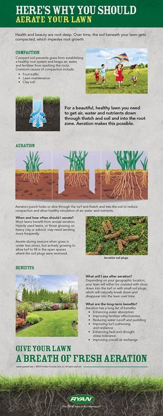 Why You Should Aerate