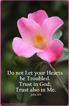 "Bible Verse - John 14:1 ""Do not Let your Hearts be Troubled. Trust in God; Trust also in Me."" NancyMcGuirk.com"