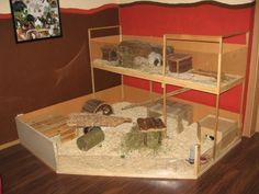 rechteck k fig f r meerschweinchen in 2 gr en l und xl. Black Bedroom Furniture Sets. Home Design Ideas