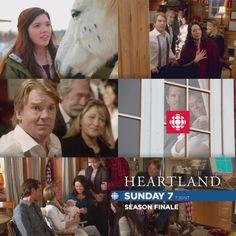 Amy And Ty Heartland, Heartland Quotes, Heartland Ranch, Heartland Tv Show, Image Editor, Photo Editor, Alisha Newton, Online Photo Editing, Amber Marshall