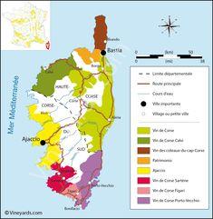 Wine Regions in Corsica