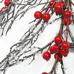 Making iced branches. Tree branches  Aleenes Tacky Glue  Colorfill Diamond Vase Filler 1 lb by Garden Splendor
