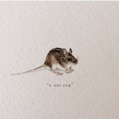 Throwback to a year ago today, when I painted this little guy. 23 x 13 mm. #miniature #watercolour #paintingsforants #mouse #art (at Kelebek Special Cave Hotel)