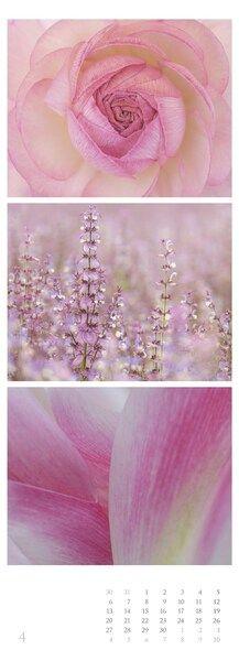 Colours of Nature Triplets 2020 - Streifenkalender XXL x - Naturkalender - Bildkalender - Wandkalender - Streifenkalender Triplets, Thalia, Colours, Nature, Naturaleza, Nature Illustration, Outdoors, Natural