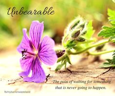 Infertility. Waiting. Hope. Grief.