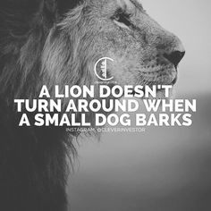 bark bark bark. You think you have what it takes to compete with me? You might think you have what it takes...but the fact is.... I'm stronger. I'm faster. I'm more dedicated than you will ever be. I will never quit. I will never stop. I am willing to do WHATEVER IT TAKES to beat you. In my mind we are at war and I will never surrender. EVER. _______________________________________ This is the conversation I have with myself internally every time I meet someone that even resembles…