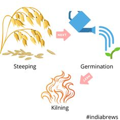 Malting is the process of converting cereal grains, for example barley, into malt by controlled germination. In this process, the sugar in the grains (Starch), which is to be used in fermentation to produce alcohol by the yeast is made accessible to the brewer. The process of malting is divided into three steps being steeping, germinating and kilning.  Read more here.