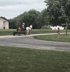 My cousin made secret friends with the little Amish boy down the road and he brings his little cart and horse to come say hi to her every few days. http://ift.tt/2hSqDdq