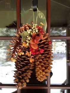 sugar pine cones pinecone crafts pinterest