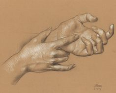 """Study of Jillian's Hands 3B pencil and white Prismacolor pencil on Rives BFK Tan Heavyweight Printmaking Paper 11""""x15"""" #art #drawing #artmodel #artistmodel #lifedrawing #figuredrawing #figurativedrawing #pencildrawing #contemporaryart #postcontemporaryart #danielmaidman by danielmaidman"""