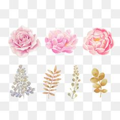 hand-painted pink watercolor flowers, Flowers, Decorative Pattern, Hand Painted PNG and PSD Free Watercolor Flowers, Watercolor Flower Background, Watercolor Texture, Pink Watercolor, Flower Png Images, Colorful Frames, Graffiti Painting, Flower Graphic, Embroidery Patterns Free