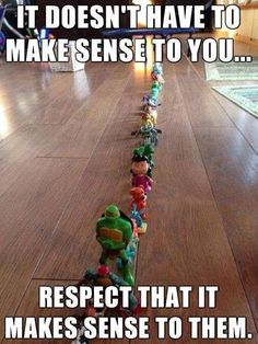 It doesn't have to make sense to you... Respect that it makes sense to them. (Conscious parenting reminder!)