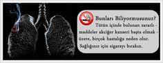 Elektronik Sigara Bilgi ve Orjinal Elektronik Sigara Satış Sitesi: Elektronik Sigara Faydaları 3