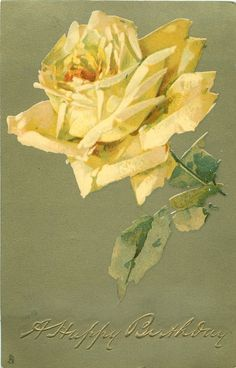 Yellow rose.  1906 ~ makes me think of home; Texas sweet Texas