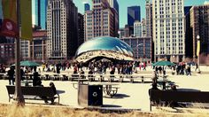 Pic of the bean