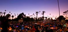 Movies in the Hollywood forever cemetery!