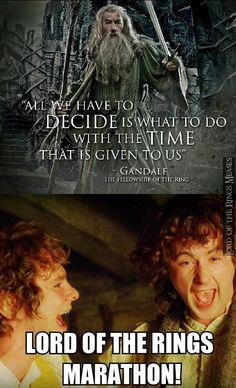 A Hobbit/LotR marathon is on my bucket list!