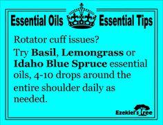 Rotator cuff issues can be helped with Basil, Lemongrass and Idaho Blue Spruce. www.EzekielsTree.com