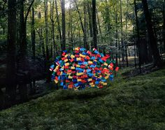 Emergent Behavior, Surreal Photos of Groups of Everyday Objects Hovering in Nature