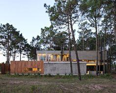 Een open huis tussen de pijnbomen in Argentinië - Roomed | roomed.nl