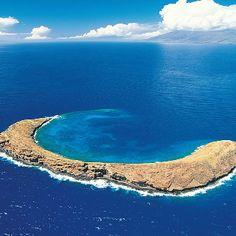 """Hawaii......... """"Molikini"""", off the western shore of Maui.  Molikini...........""""Snorkel Habitat"""""""