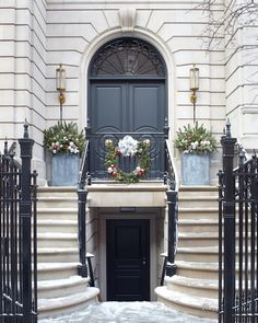 Black front door and box hedging on exterior of white painted London ...
