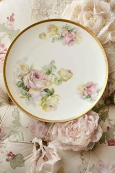 Gorgeous Antique Imperial Austria Hand Painted by Jenneliserose