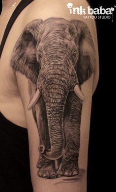 #elephant #