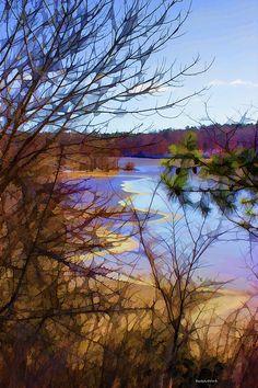 bertsworks.com #frozen #lake #ice