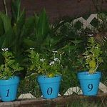 House number planters
