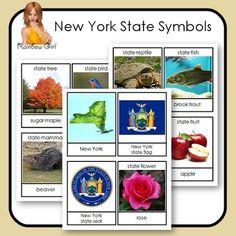 New York State Symbols - 12 cards